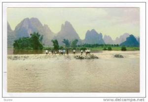 RP  Under the Big Banyan at Yangshuo, 1950s