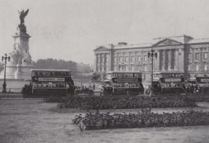 Trumans Beer Alcohol Advertising Bus at Buckingham Palace Postcard