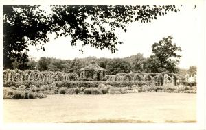 CT - Hartford. Elizabeth Park. In the Gardens.      *RPPC