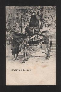070148 Egypt girl in yashmak DONKEY Drivers Vintage