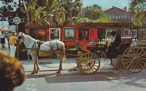 Louisiana New Orleans French Quarter Sightseeing Carriage