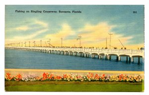 FL - Sarasota. Ringling Causeway, Fishing