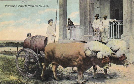 Cuba Ox Cart Delivering Water To Residences