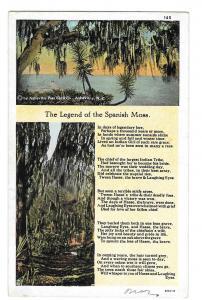 The Legend of Spanish Moss Vintage Postcard Curteich