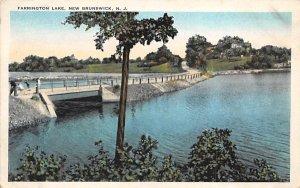 nj-new_brunswick Farrington Lake Unused