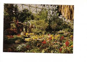 Interior, Flowers, Bloedel Conservatory, Vancouver British Columbia, Photo Do...