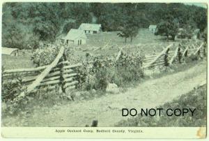 Apple Orchard Camp, Bedford Co VA