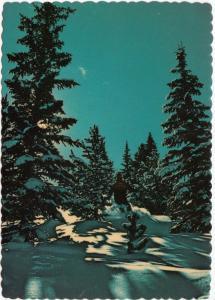 Skiing in Rocky Mountain Beauty, unused Postcard