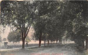 E7/ Portsmouth Ohio Postcard c1910 Lovers Lane Rose Ridge