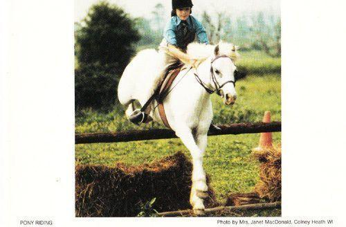 Colney Heath Horse Pony Riding Jumping Hertfordshire Womens Institute Postcard