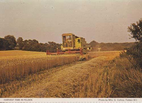Felden Farming Harvest Time Hay Herts Hertfordshire Womens Institute Postcard