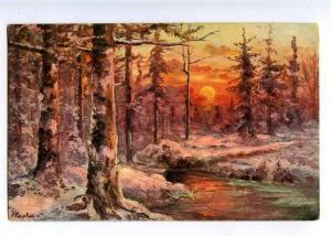 224461 RUSSIA KAPUSTIN Forest at sunset #1326 vintage postcard