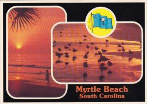 Picturesque Myrtle Beach Carolina