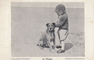Dog & Boy on Beach , 00-10s