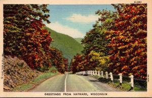 Wisconsin Greetings From Hayward Curteich