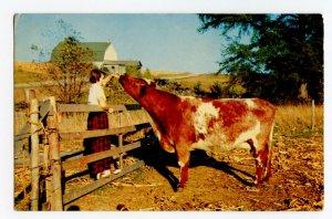 Postcard Greetings From Haigler Nebr. Nebraska Standard View Card