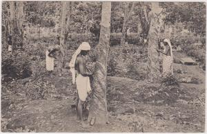 RP: Men Rubber Tapping , CEYLON , 10-30s