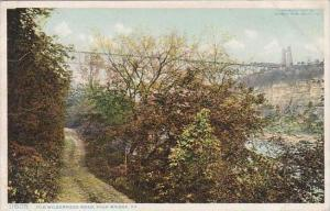 Kentucky High Bridge Old Wilderness Road