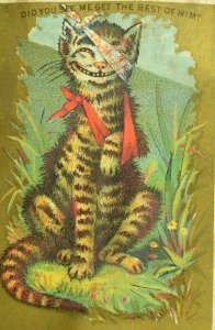 Lot of 6 Anthropomorphic Cats Tom Cats Fighting Over Girl-Cat Adorable! P79