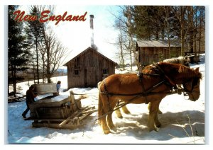 Postcard Maple Sugar Time in New England horses house NES23 K3
