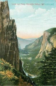 CA, Yosemite Valley, California, Look out Point, Newman Postcard No. Y.16