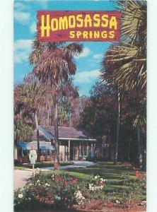 Pre-1980 GARDEN SCENE Homosassa Springs - Near Ocala Florida FL AF6746@