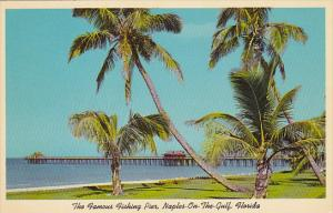 Florida Naples 1000 Foot Municipal Fishing Pier