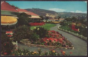 Laguna Beach,CA Postcard BIN