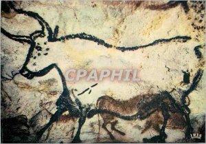 Modern Postcard Lascaux Le Perigord Tourist Prehistoric Art Great Hall wall L...