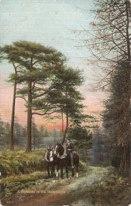 A roadway in the Trossachs. Rider with horses  Tuck  Among theb Scottish Hills