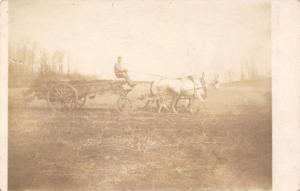 Real Photo Postcard~White Horse Team Pulls Farmer in Wagon~c1912 RPPC