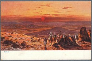 Old Postcard Camels in the Sahara Desert at Sunset by Fr. Perlberg