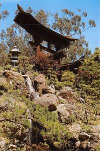 Japanese Tea Garden - San Francisco, California