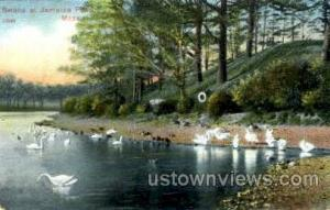 Swans, Jamaica Pond Jamaica Plain MA Unused