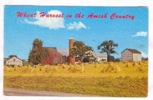 An Amish Farm in the midst of the wheat harvest, Lancaster, Pennsylvania,40-60s