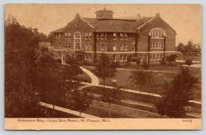 Mt Mount Pleasant Michigan~Central State Normal College~Gymnasium~c1912 Sepia PC