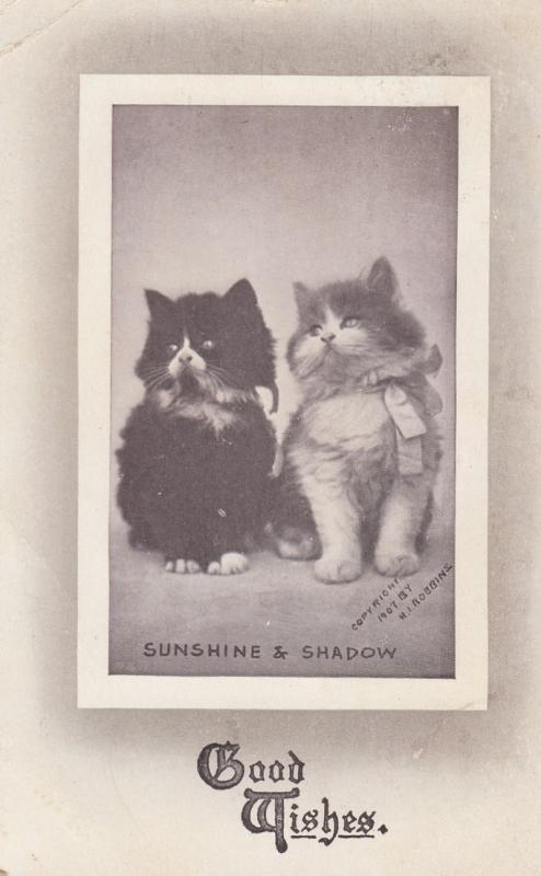 2 Cats , Sunshine & Shadow , Good Wishes , 1911