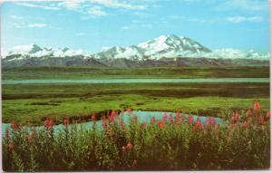 Mt. McKinley (Denali) in Alaska