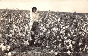 F37/ Black Americana Postcard 40s Casa Grande Arizona Cotton Pickers RPPC 6