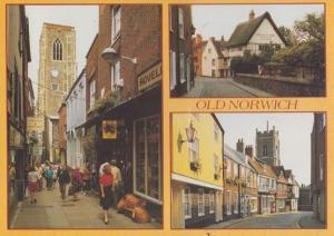 Old Norwich Britons Arms Pub Mustard Shop Painting Artist Shops Norfolk Postcard