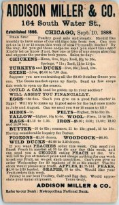 1888 Chicago Advertising Postcard Poultry ADDISON MILLER & CO 164 S. Water St.