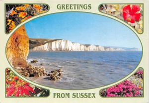 Greetings from Sussex The Seven Sisters Cliffs