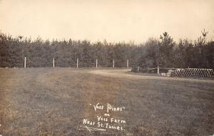 St James Minnesota~Voss Pines Farm~Pile of Pipes~Real Photo Postcard RPPC c1910