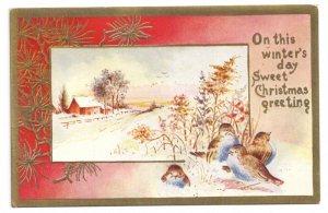 Christmas Birds Snowy Farm Scene Gold Trim Lightly Embossed Vintage Postcard