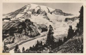 RPPC Where Flowers and Glaciers Meet - Mount Rainier WA, Washington