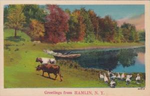 New York Greetings From Hamlin 1943