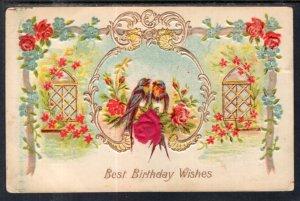 Birthday Wishes Birds Scene