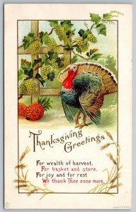Thanksgiving~Wealth of Harvest~Turkey @ Grape Vines~Stecher 37 B~James E Pitts