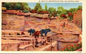 Texas San Antonio Breckenridge Park Bear Pit 1945 Curteich