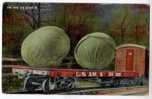 Extravaganza - Cabbage on a Railroad Car